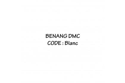 DMC Embroidery-Cross Stitch (Blanc)